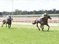Nouvelle Again wins two maidens…