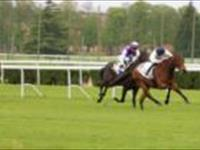 Fixette gets 2yo black type in France