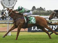 VOLPE wins again at Rosehill