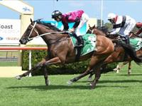 Prontissimo breaks her maiden in good style
